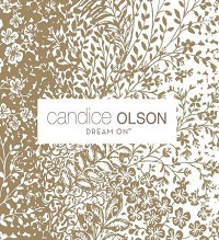 Dream On By Candice Olson