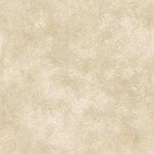 Taupe Evan Texture