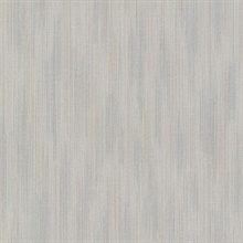 Blaise Pewter Ombre Texture