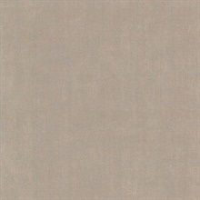 Jagger Taupe Fabric Texture