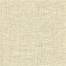 Beige Canvas