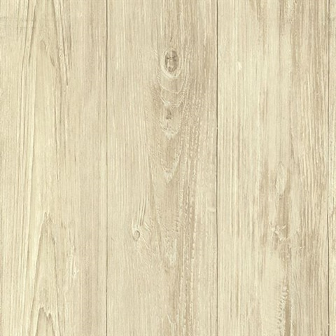 Mapleton Birch Faux Wood Texture