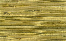Gold and Black Grasscloth