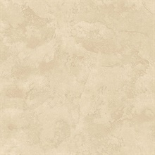 Lesley Taupe Troweled Tuscan Texture