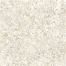 Safe Harbor Grey Marble Faux Effects