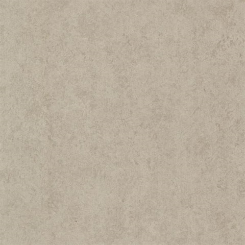 pierre taupe distressed texture 670 51926