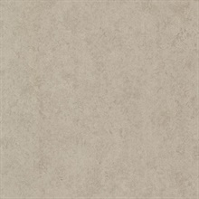 Pierre  Taupe Distressed Texture