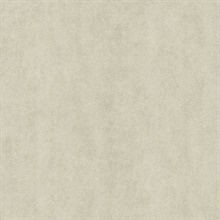 Galen Light Grey Pewter Texture