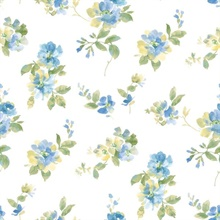 Captiva Blue Watercolor Floral