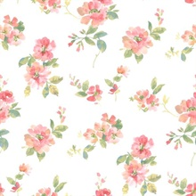 Captiva Peach Watercolor Floral