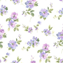 Captiva Purple Watercolor Floral