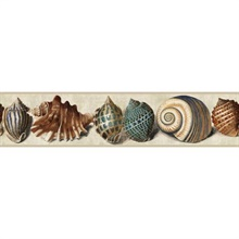 Sea Shell Border