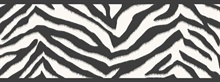 Mia Black Faux Zebra Stripes