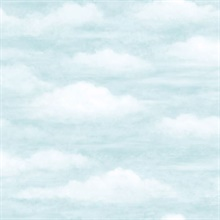 Daydreamer Light Blue Clouds Faux Effects