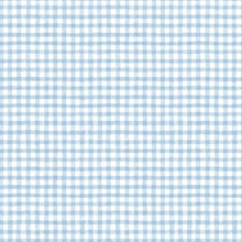 Dorothy Blue Washy Plaid Tartan