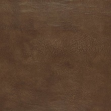 Amarillo Black Walnut
