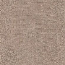 Crocodile Textured Taupe