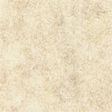 Ambra Light Brown Stylized Texture