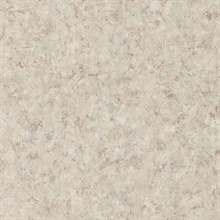 Marco Light Grey Plaster Texture