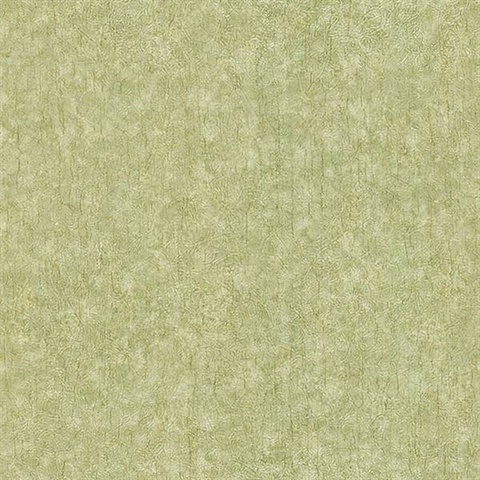 Fabian Light Green Damask Texture