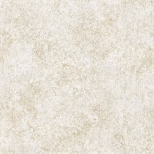 Ambra Cream Stylized Texture