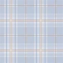 Blue & Tan Plaid