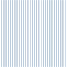 Sky Blue & White Stripe