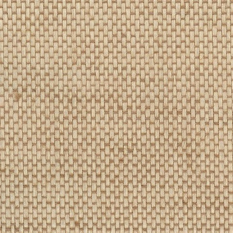Light Neutral Shimmer Basketweave 488 422 Designer