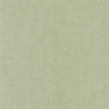Vellum Light Green Air Kinife Texture