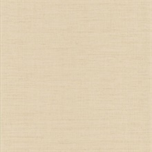 Seda Neutral Silk Texture