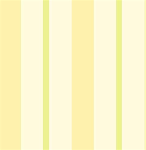 Sunshine Stripe Yellow Stripe