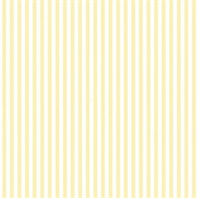 Solid Striped