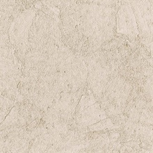 Stucco Plaster Light Brown Texture