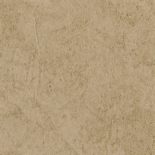 Stucco Plaster Chocolate Texture