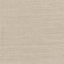 Zoster Taupe Texture