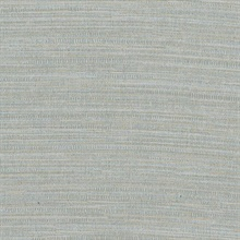 Zoster Grey Texture