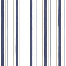 Blue & Gold Pinstripes