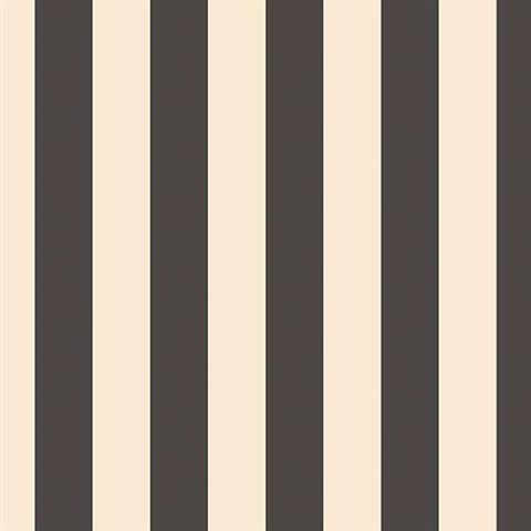 black off white stripe