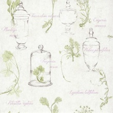 Herbs and Glass Collage
