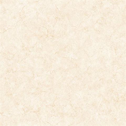 Paint Texture Pp27711