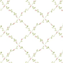 Petite Floral Lattice