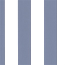 Anaheim Stripe Blue