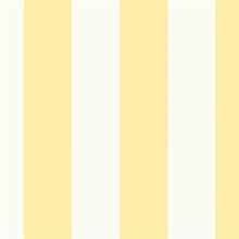 Anaheim Stripe Yellow