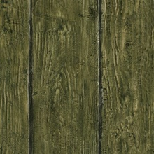Rodeo Green Outhouse Wood Wall