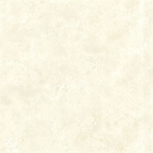Aspasia Cream Distressed Texture