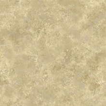 Aspasia Gold Distressed Texture