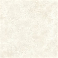 Aspasia Neutral Distressed Texture