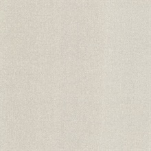 Albin Light Grey Linen Texture