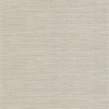 David Light Grey Basket Weave Texture