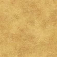Brown Scroll Texture